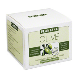 PLANTANA Olive Butter Gesichts Creme